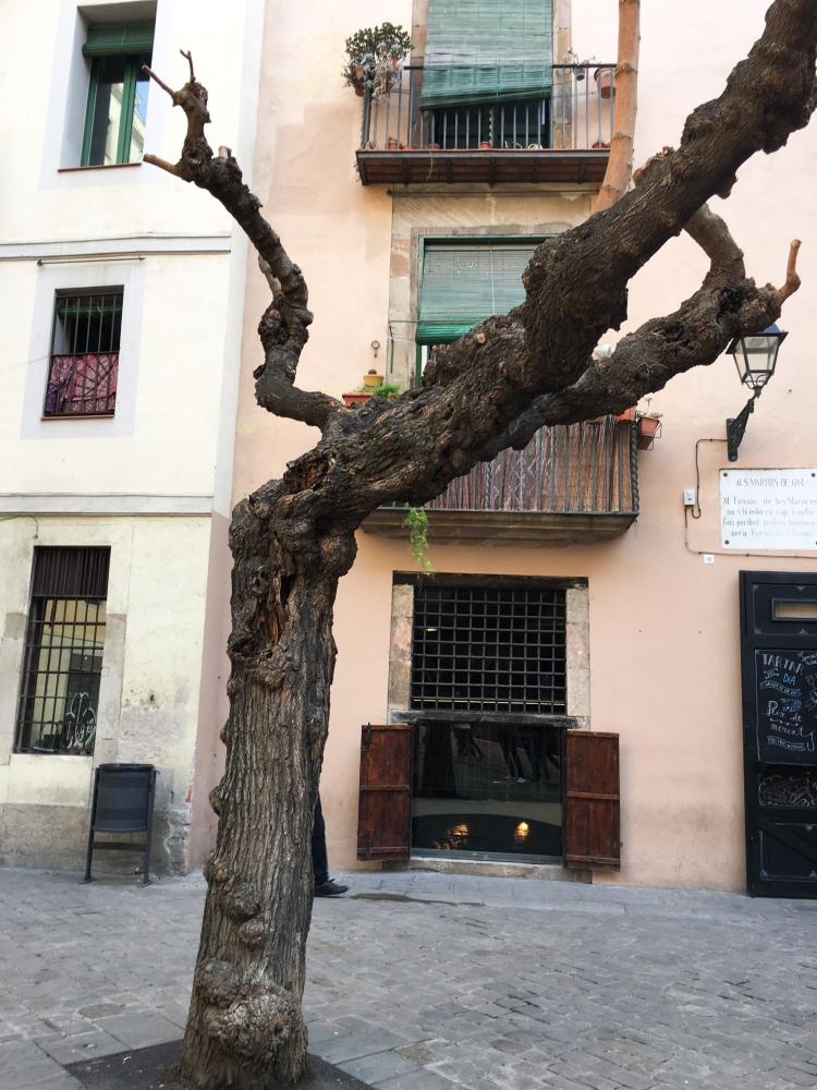 barcelona-4